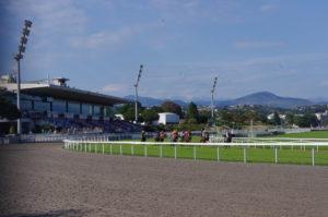 Les chevaux se mesurent tout au long de l'année sur l'hippodrome de la Côte d'Azur